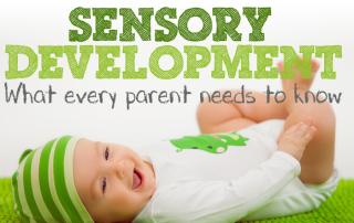 sesnory-development