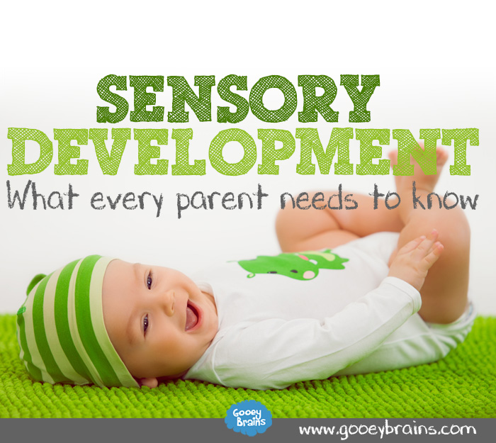 sensory skills and the parent infant realtionship Free teacher-student relationships  he may need to increase his social skills and  implementing successful parent-teacher partnerships in school.