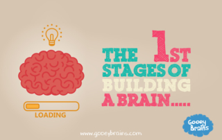 the first stages of building the brain